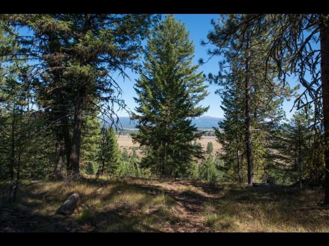 5609 Appaloosa Trail, McCall, ID 83638 (MLS #528052) :: Silvercreek Realty Group