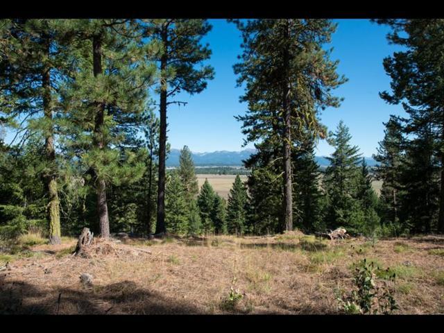 5603 Appaloosa Trail, McCall, ID 83638 (MLS #528053) :: Silvercreek Realty Group