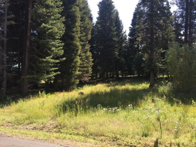 Lot 30 Eagle Drive, McCall, ID 83638 (MLS #528412) :: Silvercreek Realty Group