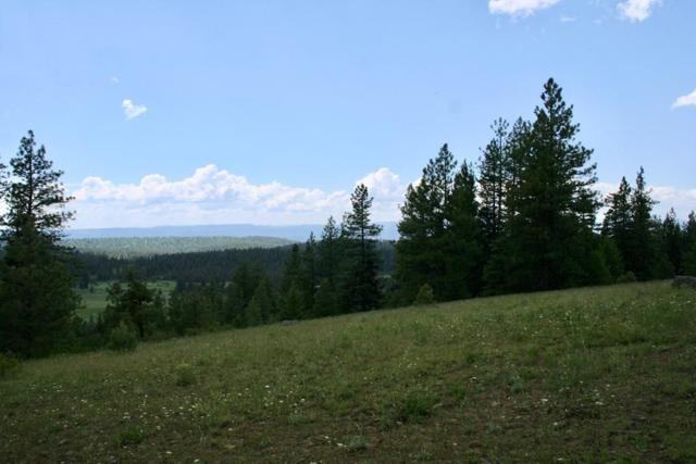 Lot 8 Club Hill Boulevard, McCall, ID 83638 (MLS #529272) :: Silvercreek Realty Group