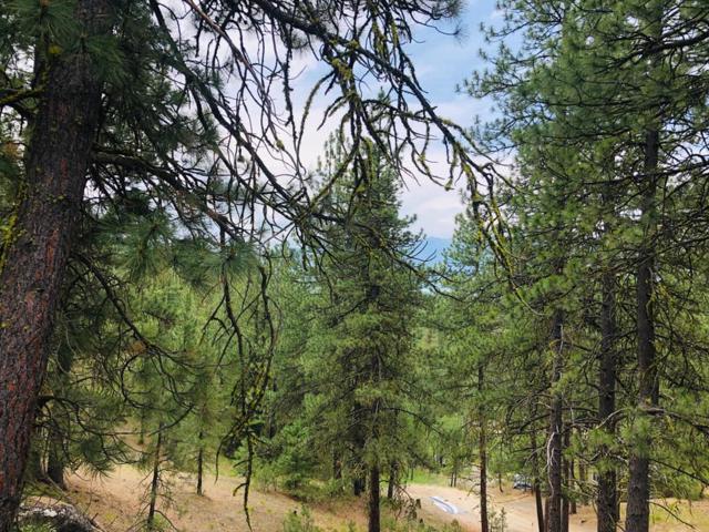 23 Stanley Drive, Cascade, ID 83616 (MLS #529377) :: Boise River Realty