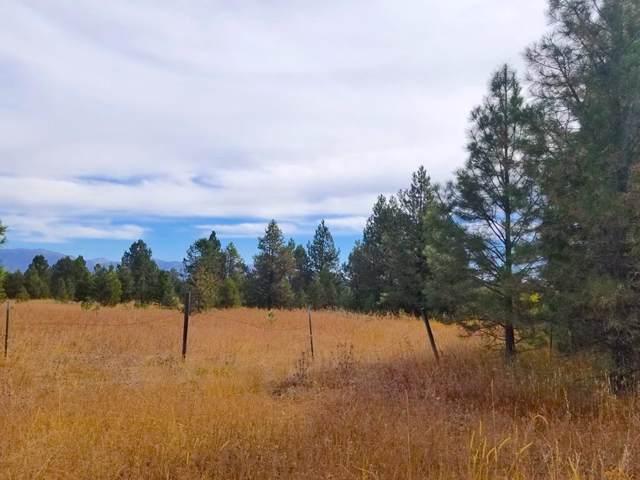 TBD Moon Drive, McCall, ID 83638 (MLS #529978) :: Boise River Realty