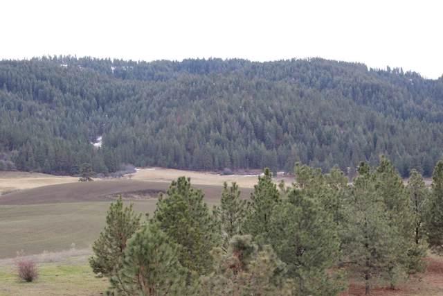 000 Slickpoo Road, Culdesac, ID 83524 (MLS #530102) :: Boise River Realty