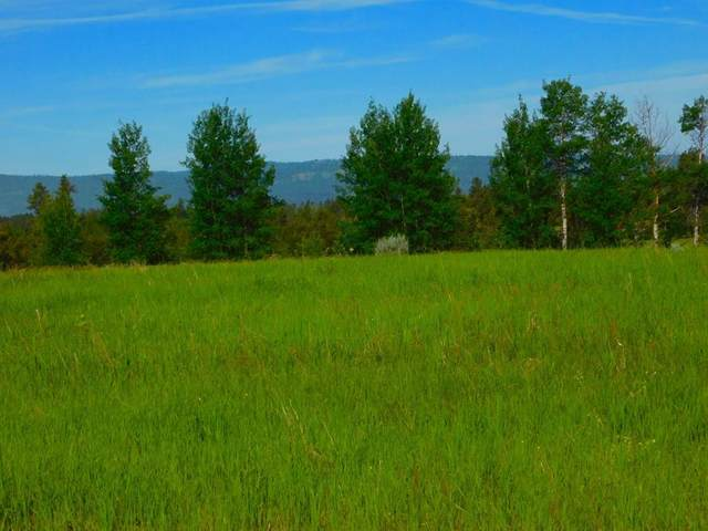 13790 Raptor Loop, McCall, ID 83638 (MLS #530223) :: Scott Swan Real Estate Group