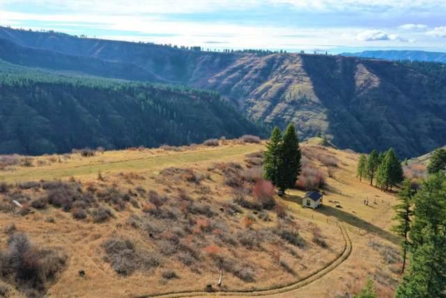 325 Trail Lane #14, Grangeville, ID 83554 (MLS #530495) :: Boise River Realty