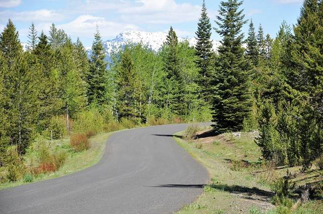 TBD Thunderbolt Place, McCall, ID 83638 (MLS #530685) :: Boise River Realty
