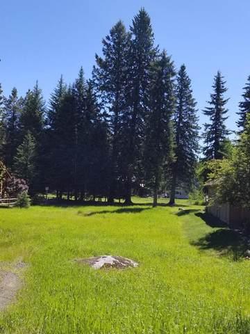 TBD Divot Lane, McCall, ID 83638 (MLS #530840) :: Boise River Realty