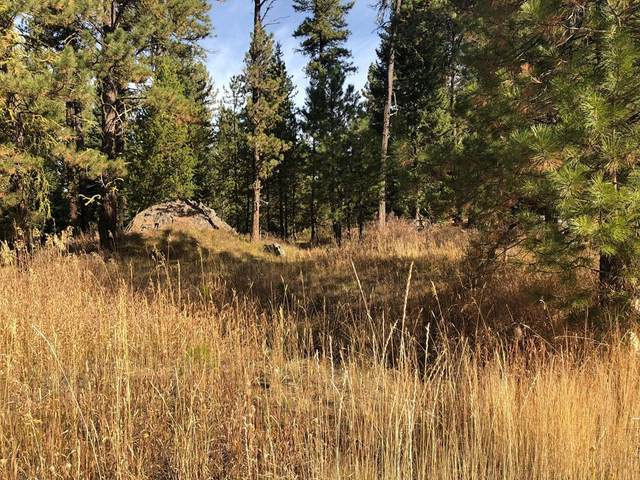 Lot 17 Woodlands Drive, McCall, ID 83638 (MLS #530845) :: Boise River Realty