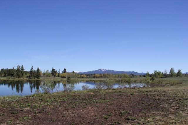 Lot 55 Rawhide Loop, McCall, ID 83638 (MLS #530922) :: Boise River Realty