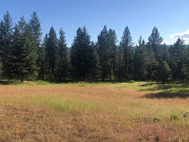 TBD White Tail Court, New Meadows, ID 83654 (MLS #530927) :: Silvercreek Realty Group