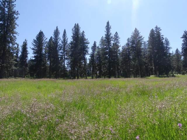 Lot 22 Timber Ridge Drive, New Meadows, ID 83654 (MLS #530972) :: Silvercreek Realty Group