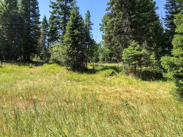TBD Clements Street, McCall, ID 83638 (MLS #531011) :: Silvercreek Realty Group
