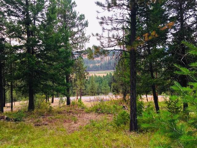 TBD Tamarack View Drive, New Meadows, ID 83654 (MLS #531216) :: Boise River Realty