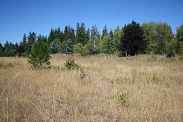 1023 Kaitlyn Loop, McCall, ID 83638 (MLS #531336) :: Boise River Realty