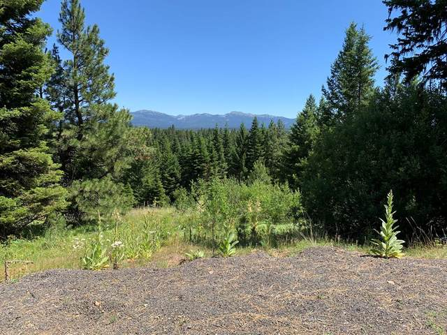 4333 Song Sparrow Court, McCall, ID 83638 (MLS #531354) :: Silvercreek Realty Group