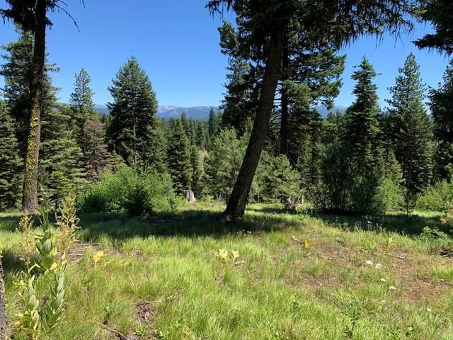 4642 Williams Creek Loop, McCall, ID 83638 (MLS #531356) :: Boise River Realty