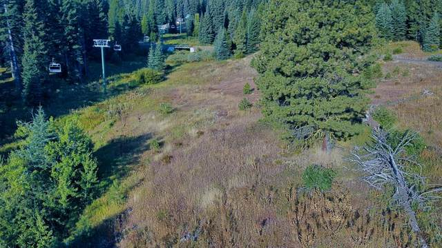 633 Whitewater Drive, Tamarack, ID 83615 (MLS #531364) :: Boise River Realty