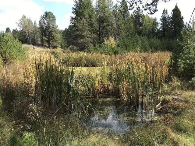 L13 B2 Placer Place, Cascade, ID 83611 (MLS #531425) :: Boise River Realty