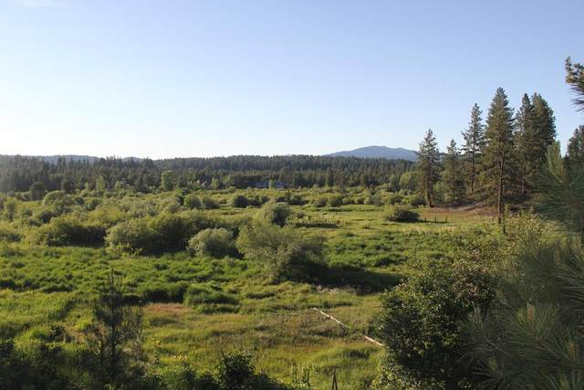 Lot 2 Saddle Court, McCall, ID 83638 (MLS #531429) :: Boise River Realty