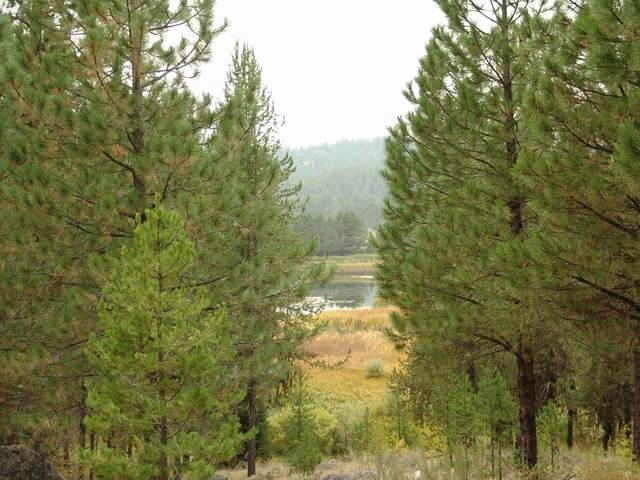207 Pointes Road, Cascade, ID 83611 (MLS #531430) :: Boise River Realty