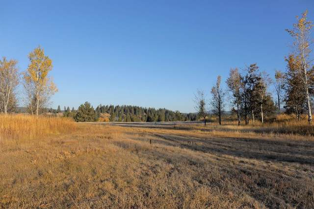 Lot 11 River Ranch Road, McCall, ID 83638 (MLS #531527) :: Boise River Realty