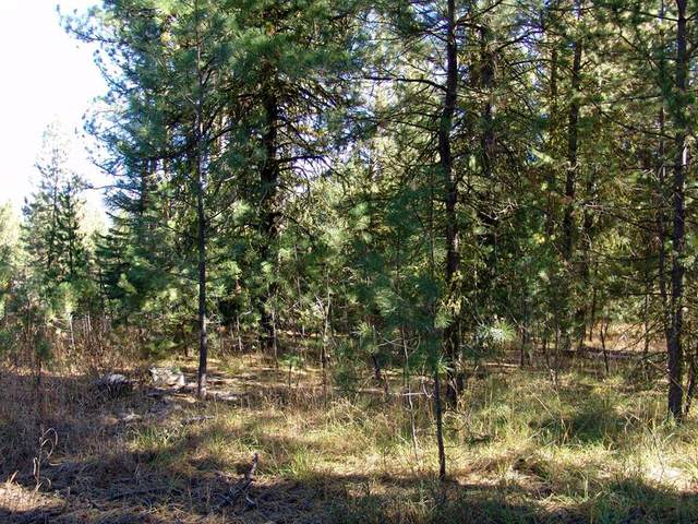 TBD Hwy 55, Cascade, ID 83611 (MLS #531578) :: Boise River Realty
