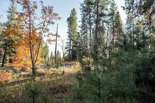 TBD Verita Street, McCall, ID 83638 (MLS #531607) :: Silvercreek Realty Group
