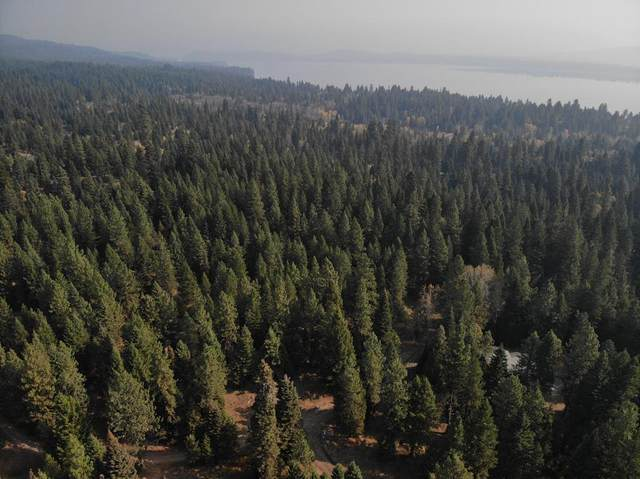 TBD Meadows Road, McCall, ID 83638 (MLS #531608) :: Boise River Realty