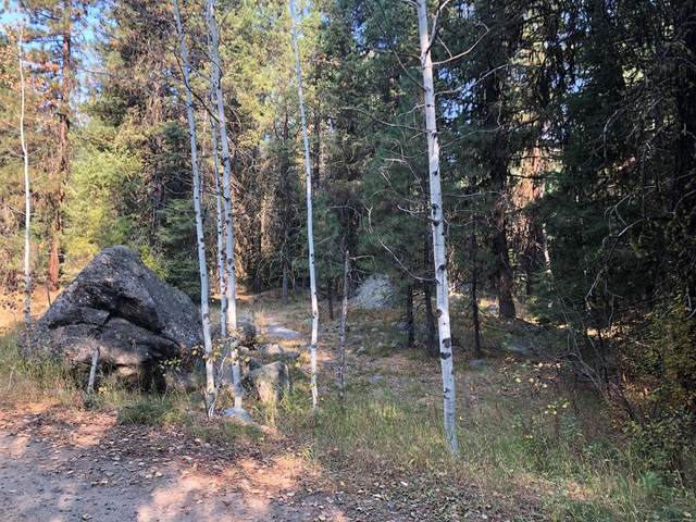 TBD Meadows Road, McCall, ID 83638 (MLS #531609) :: Silvercreek Realty Group