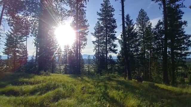 L2 Bella View Drive, McCall, ID 83638 (MLS #531885) :: Adam Alexander