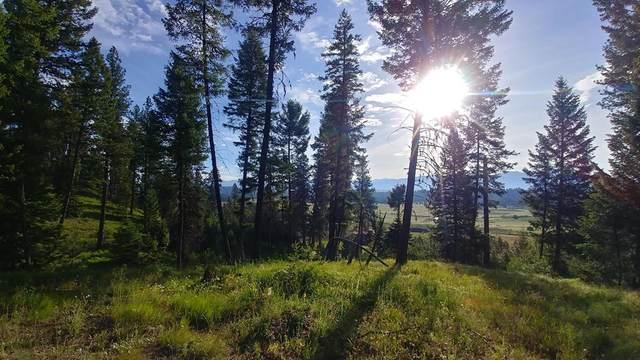 L3 Bella View Drive, McCall, ID 83638 (MLS #531886) :: Adam Alexander