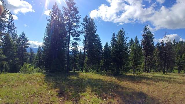 L8 Bella Vista Drive, McCall, ID 83638 (MLS #531924) :: Boise River Realty