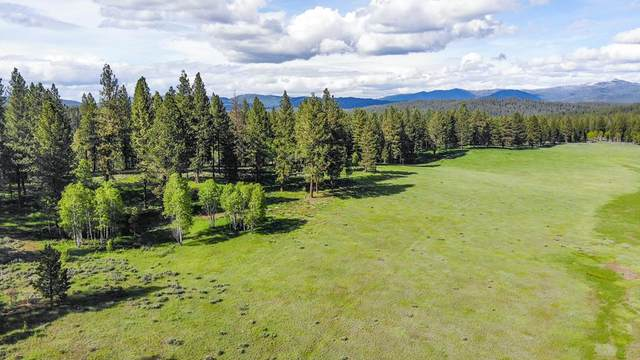 TBD None, Horseshoe Bend, ID 83629 (MLS #531970) :: Boise River Realty