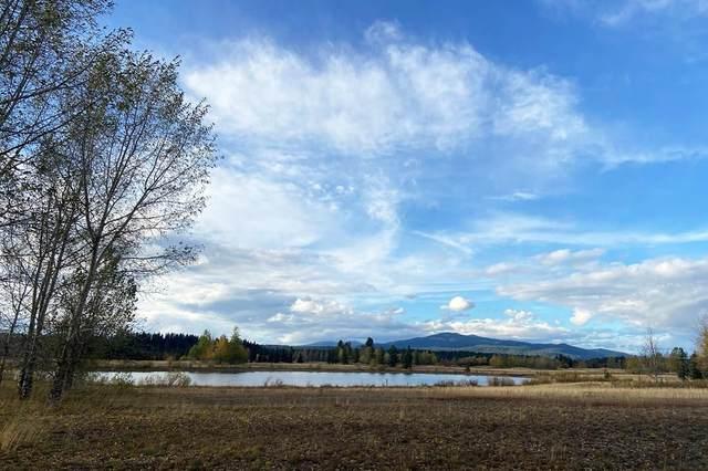 Lot 54 Rawhide Loop, McCall, ID 83638 (MLS #531974) :: Boise River Realty