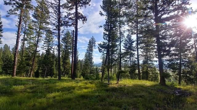 L5 Bella View Drive, McCall, ID 83638 (MLS #531981) :: Adam Alexander