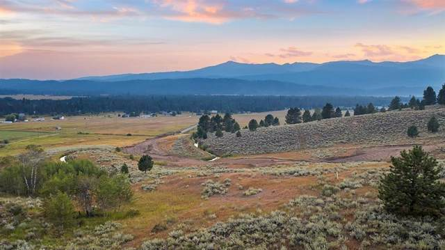 TBD Alpha View Place, Cascade, ID 83611 (MLS #532061) :: Adam Alexander