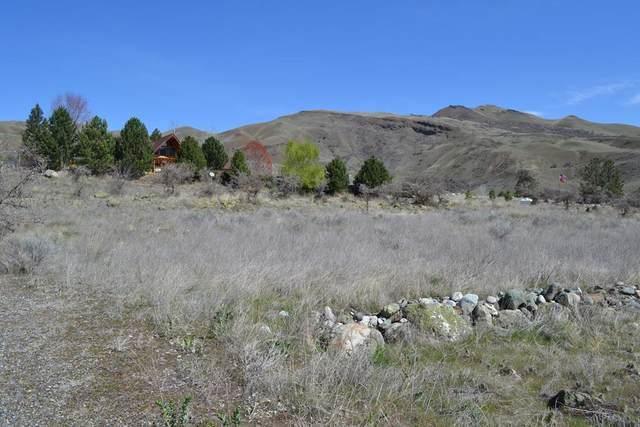 Lot 24 Mossy Point Circle, White Bird, ID 83554 (MLS #532210) :: Boise River Realty