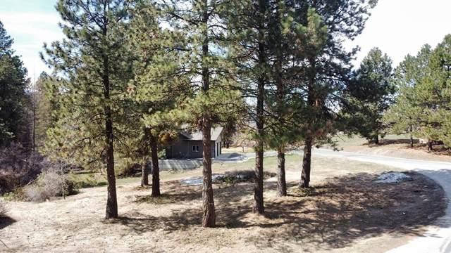 107 Par Drive, Cascade, ID 83611 (MLS #532299) :: Boise River Realty