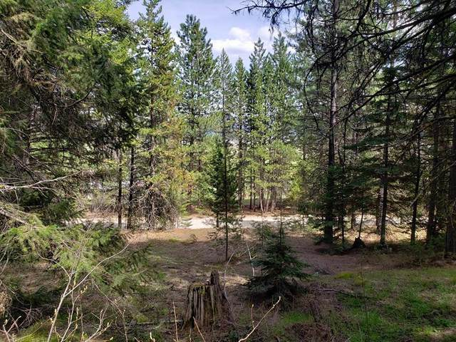 Tax #2 Round Valley Road, Cascade, ID 83611 (MLS #532375) :: Silvercreek Realty Group