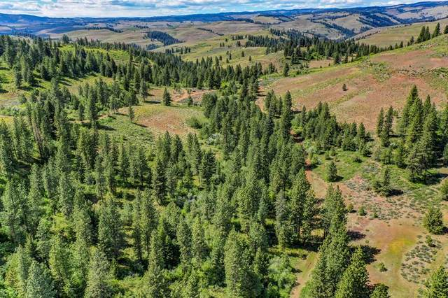 TBD Rome Beauty Avenue, Council, ID 83612 (MLS #532379) :: Silvercreek Realty Group