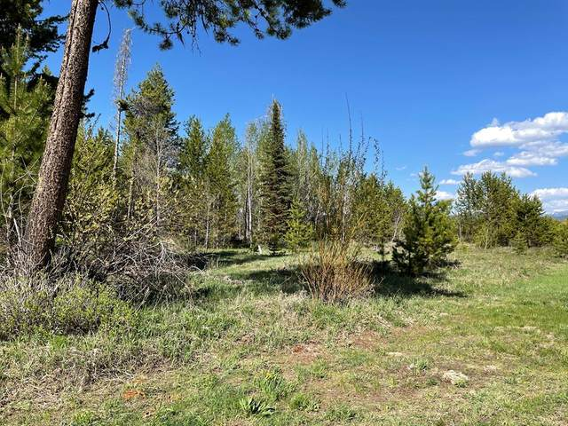 tbd Suzanna Lane, Donnelly, ID 83615 (MLS #532475) :: Scott Swan Real Estate Group