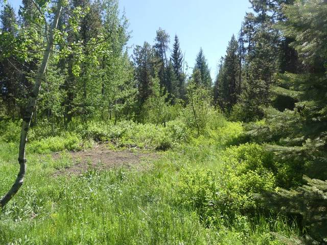 12793 Chuckwagon Road, Donnelly, ID 83615 (MLS #532582) :: Boise River Realty