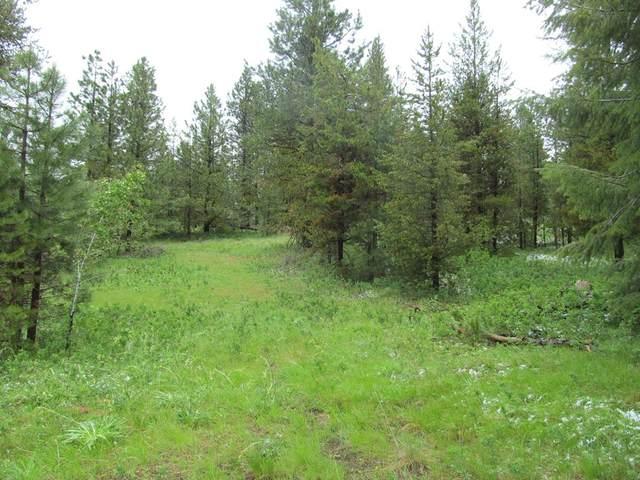60 Deer Run Road, Cascade, ID 83611 (MLS #532616) :: Scott Swan Real Estate Group