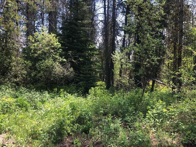 181 Angus Lane, Donnelly, ID 83615 (MLS #532619) :: Scott Swan Real Estate Group