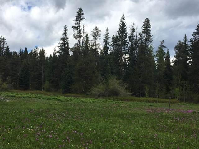 Parcel B Deer Trail Road, Donnelly, ID 83615 (MLS #532624) :: Scott Swan Real Estate Group