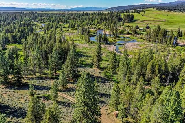 176 Davis Creek Lane, Donnelly, ID 83615 (MLS #532626) :: Scott Swan Real Estate Group