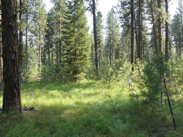 TBD Knights Road, McCall, ID 83638 (MLS #532820) :: Boise River Realty