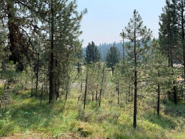 Lot 30 Meadow Drive, New Meadows, ID 83654 (MLS #532898) :: Boise River Realty