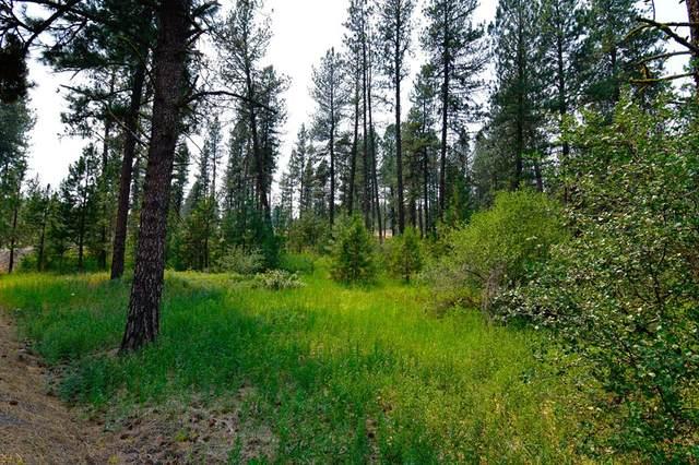 B7 L11 Hot Springs Road, New Meadows, ID 83654 (MLS #532909) :: Boise River Realty