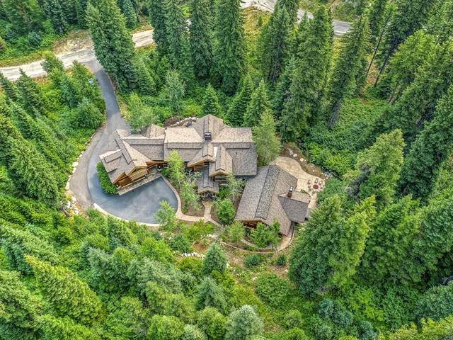 149 Pinnacle Court, Tamarack, ID 83615 (MLS #532953) :: Scott Swan Real Estate Group